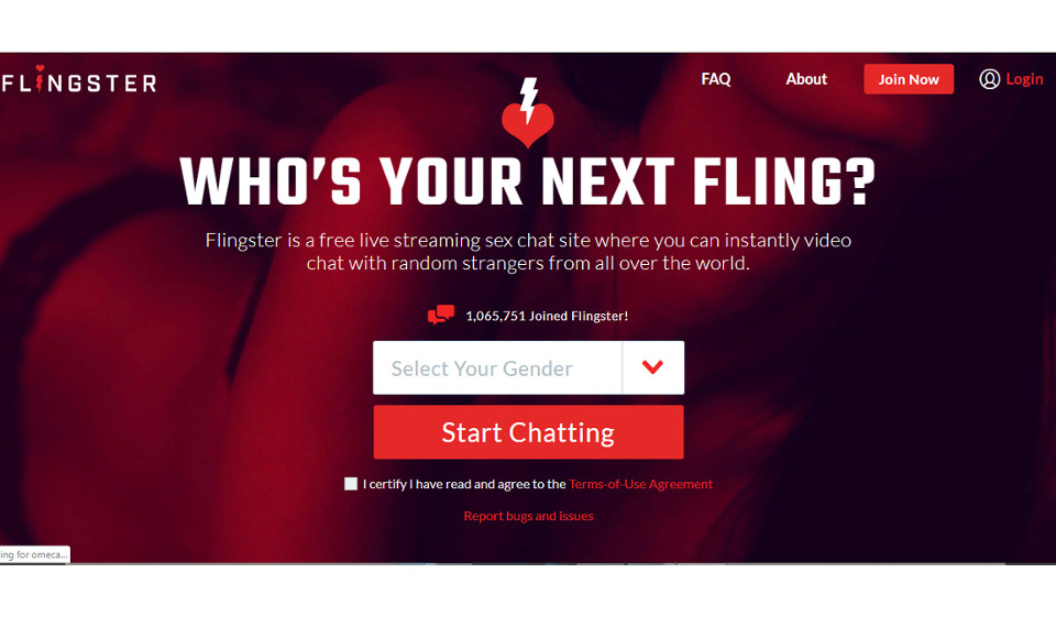Flingster Review: Tolle Dating Seite?