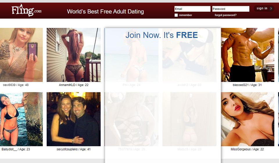 Fling.com Bewertung: Great Dating Site?